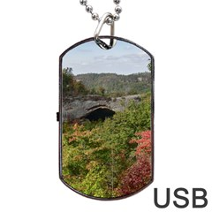 Natural Arch Dog Tag Usb Flash (one Side)