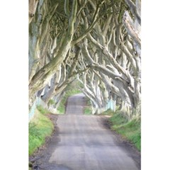 Dark Hedges, Ireland 5 5  X 8 5  Notebooks