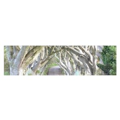Dark Hedges, Ireland Satin Scarf (oblong)