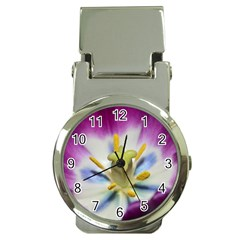 Purple Beauty Money Clip Watches