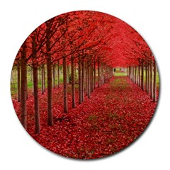AVENUE OF TREES Round Mousepads