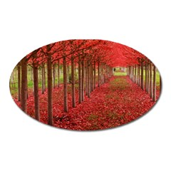 AVENUE OF TREES Oval Magnet