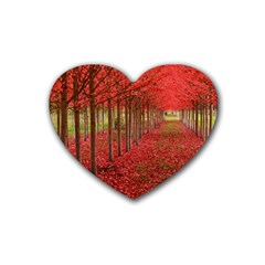 AVENUE OF TREES Heart Coaster (4 pack)