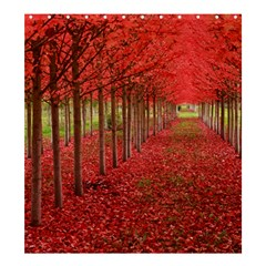 AVENUE OF TREES Shower Curtain 66  x 72  (Large)