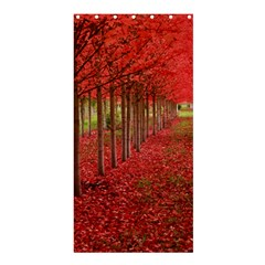 AVENUE OF TREES Shower Curtain 36  x 72  (Stall)