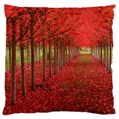 Avenue Of Trees Large Flano Cushion Cases (two Sides)