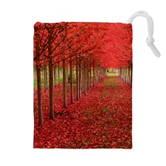 Avenue Of Trees Drawstring Pouches (extra Large)
