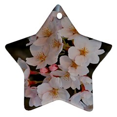 SAKURA Ornament (Star)