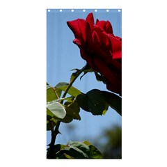 RED ROSE 2 Shower Curtain 36  x 72  (Stall)