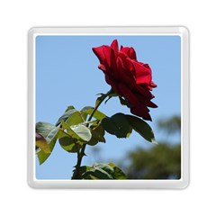 RED ROSE 2 Memory Card Reader (Square)