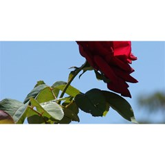 RED ROSE 2 YOU ARE INVITED 3D Greeting Card (8x4)