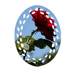 Red Rose 2 Ornament (oval Filigree)