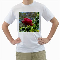 Red Rose 1 Men s T Shirt (white) (two Sided)