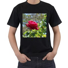 Red Rose 1 Men s T Shirt (black) (two Sided)