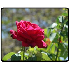 RED ROSE 1 Fleece Blanket (Medium)
