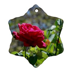 RED ROSE 1 Ornament (Snowflake)