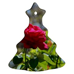 Red Rose 1 Christmas Tree Ornament (2 Sides)