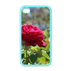 RED ROSE 1 Apple iPhone 4 Case (Color)