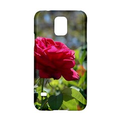 Red Rose 1 Samsung Galaxy S5 Hardshell Case