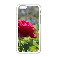 RED ROSE 1 Apple iPhone 6/6S White Enamel Case