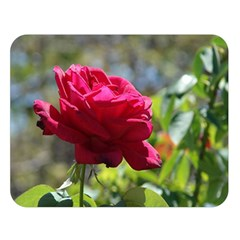 RED ROSE 1 Double Sided Flano Blanket (Large)