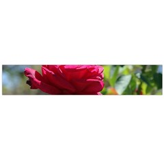 RED ROSE 1 Flano Scarf (Large)