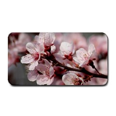 PLUM BLOSSOMS Medium Bar Mats