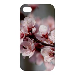 PLUM BLOSSOMS Apple iPhone 4/4S Hardshell Case
