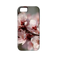 PLUM BLOSSOMS Apple iPhone 5 Classic Hardshell Case (PC+Silicone)
