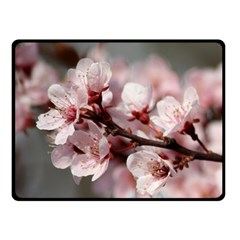 Plum Blossoms Double Sided Fleece Blanket (small)