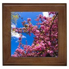PINK FLOWERS Framed Tiles