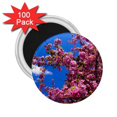 PINK FLOWERS 2.25  Magnets (100 pack)
