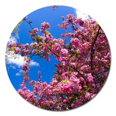 Pink Flowers Magnet 5  (round)