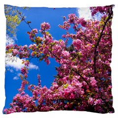 Pink Flowers Large Flano Cushion Cases (two Sides)