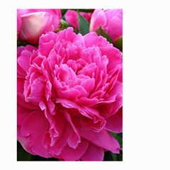 Paeonia Eleanor Small Garden Flag (two Sides)