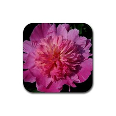PAEONIA CORAL Rubber Square Coaster (4 pack)