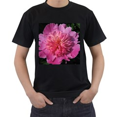 Paeonia Coral Men s T Shirt (black) (two Sided)
