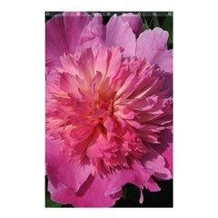 Paeonia Coral Shower Curtain 48  X 72  (small)