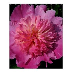 Paeonia Coral Shower Curtain 60  X 72  (medium)