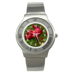 Lilium Red Velvet Stainless Steel Watches