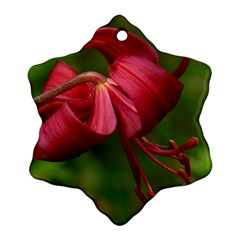 LILIUM RED VELVET Ornament (Snowflake)