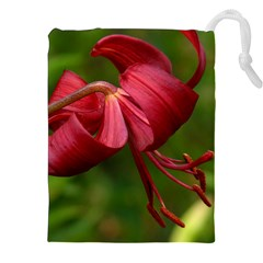 Lilium Red Velvet Drawstring Pouches (xxl)