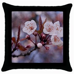 CHERRY BLOSSOMS Throw Pillow Cases (Black)