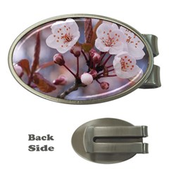 CHERRY BLOSSOMS Money Clips (Oval)
