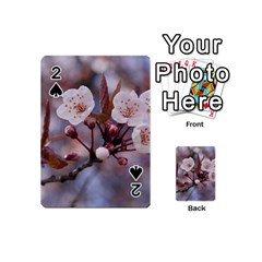 CHERRY BLOSSOMS Playing Cards 54 (Mini)