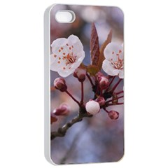 CHERRY BLOSSOMS Apple iPhone 4/4s Seamless Case (White)