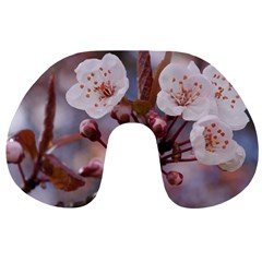 Cherry Blossoms Travel Neck Pillows
