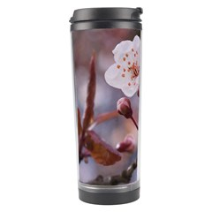 CHERRY BLOSSOMS Travel Tumblers