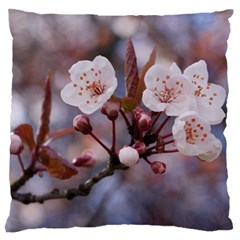 CHERRY BLOSSOMS Standard Flano Cushion Cases (One Side)