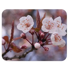 CHERRY BLOSSOMS Double Sided Flano Blanket (Medium)